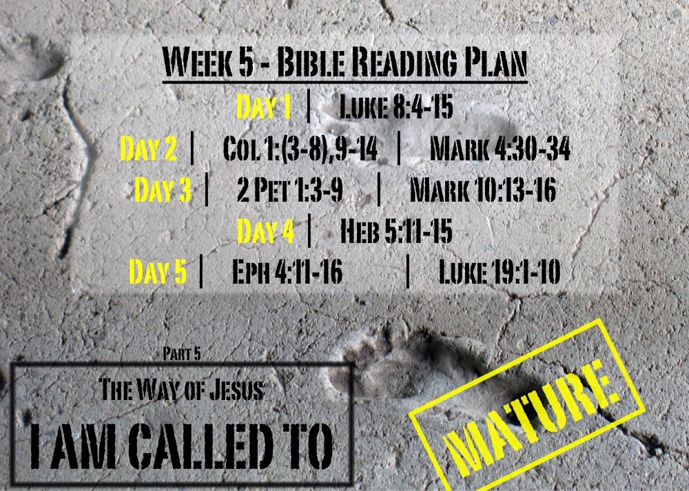 TheWayOfJesus-I am called to - Week 5 Reading Slide