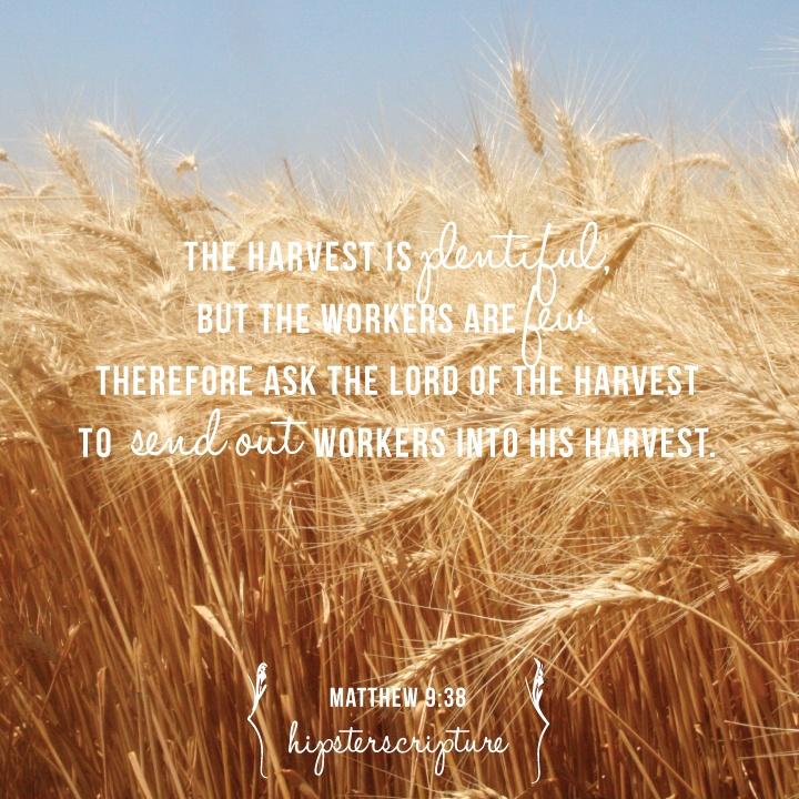 Matthew 9.38