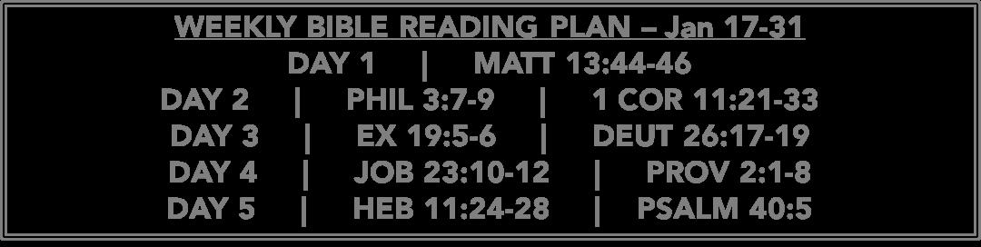 Matt 13.44-46 - Reading Plan -  Jan 24-31.2016