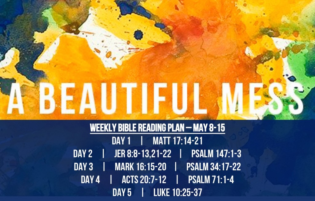 Matt 17.14-21 - Reading Plan -  May 15 - May 1.2016 - A Beautiful Mess - Inept Church